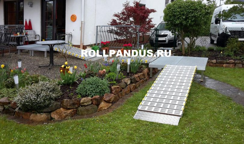 Роллопандус в саду