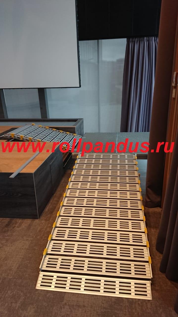 Роллопандус в конференц зале (С-Петербург-2020)